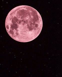 Why you should celebrate the full moon for your health