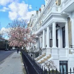 Re-discovering West London's South Kensington and Chelsea: the travel guide