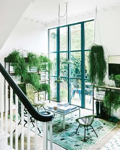 House tour: a London family home that uses greenery in every room