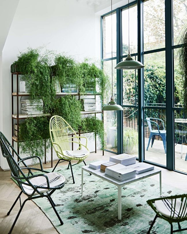 Profusion de plantes vertes