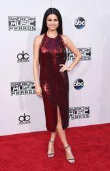 American Music Awards 2015: red carpet