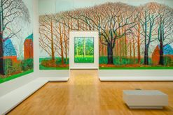 Inside the David Hockney exhibition, on now at the NGV